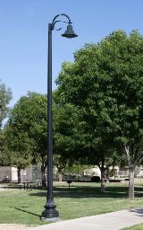 whatley-cf10-composite-park-pole
