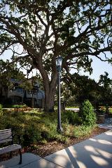 whatley-co50-octagonal-park-bench-light-pole