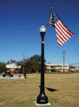 whatley-co50-octagonal-park-pole