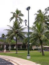 whatley-ts45-d9m-park-light-pole