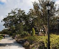 whatley_co50-park-decorative-light-pole