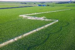 precisioncorner_corn_aerial_yorkne_june2012_011_lo_web