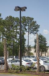 CMT-marathon-composite-light-pole-Hilton-Head
