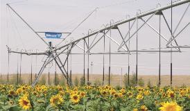 Galvanized Valley Irrigation Machine 3