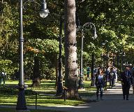 whatley_co50-campus-composite-light-poles