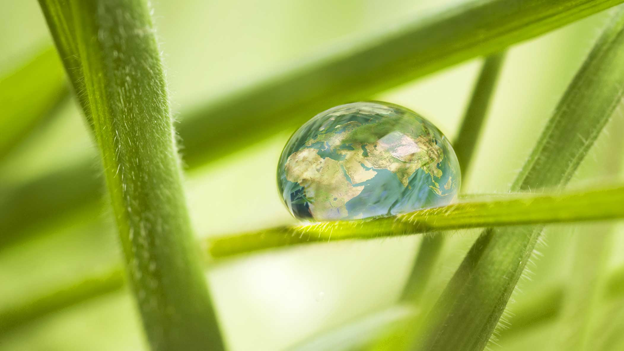 SMALL-432.59x243.33_Water-drop-with-Globe-image-on-Plant-Leaf