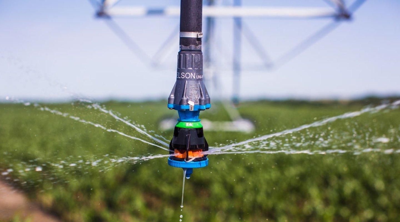 may-5-2017-blog-post---sprinkler---image