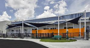 Miami Galvanizing Miami Dade Animal Shelter