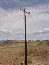 CMT-Marathon-Distribution-Pole-1